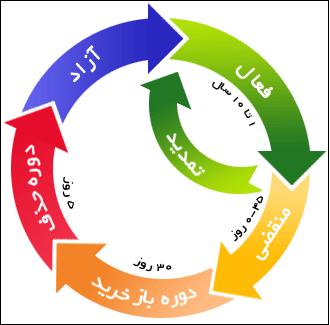 چرخه ی حیات دامنه